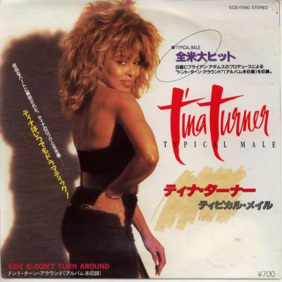 Tina Turner-Typical Male01.jpg